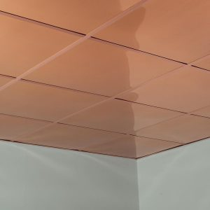 Fasade Ceiling Tile in Flat