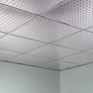 Fasade Ceiling Tile in Minidome